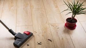 Dirty Laminate Floor